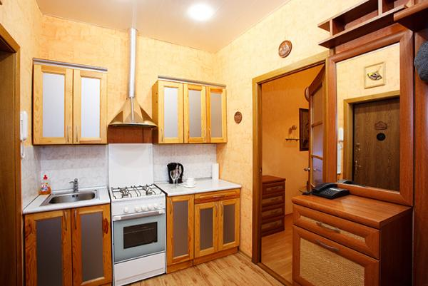 Lenina str 16 apartment with 1 ROOM apartment for $55.00